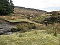 Burbage Brook and Packhorse Bridge - geograph.org.uk - 750373.jpg