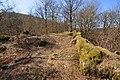 Burgruine-Hattstein-JR-E-3734-2020-04-02.jpg