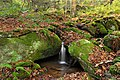 Burns Run Wild Area (21) (15752791545).jpg