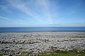 Burren Landscape 2.jpg