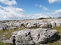 Burren National Park, Weathered Limestone - geograph.org.uk - 803106.jpg