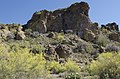 Butcher Jones Trail, Burro Cove and Beyond, Tonto National Park, Arizona - panoramio (52).jpg