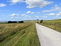 Byway, Roundway - geograph.org.uk - 1564935.jpg