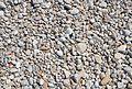 Còdols de la platja de l'Almadrava, els Poblets.JPG