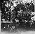 CH-NB - Iran, Teheran (Tehran)- Gärten - Annemarie Schwarzenbach - SLA-Schwarzenbach-A-5-19-034.jpg