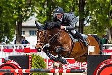 piquet chevaux