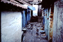 Calcutta-slums-1986-IHS-40-18-Dog.jpeg