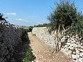 Cami de Cavalls - panoramio.jpg
