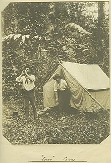 Camping in sub-tropical forest around Cairns, ca. 1907 (3760143269).jpg