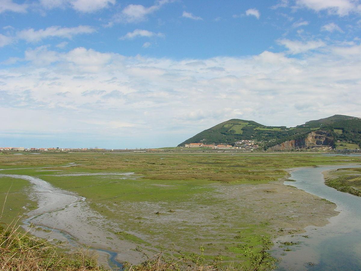 SENDERISMO y MN: Estuario del Río Asón y Marisma de Colindres