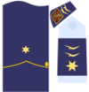 Captain general of the Air Force 13ab.png