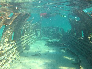 Norman's Cay - The wreckage of a Curtiss C-46 Commando that crashed in shallow water at Norman's Cay during the 1980s (2006)