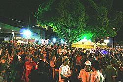 Carnaval Jardim 2008.jpg