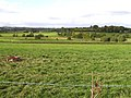 Carrickballydooey Townland - geograph.org.uk - 1007178.jpg