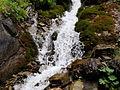 Cascada cip.jpg