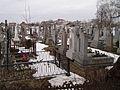Cemetery, Zapytiv (03).jpg