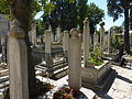 Cemetery at the Fatih Mosque - P1020086.JPG