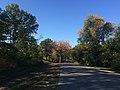 Central Park, New York, NY, USA - panoramio (180).jpg