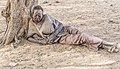 Chad 2019-south of Biltine marginalized DSC4092.jpg