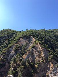 Chiffa mountain.jpg
