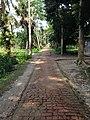 Choto Gourichanna, Phuljhury, Barguna - panoramio.jpg