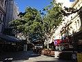 Christmas 2013 in Brisbane 06.jpg