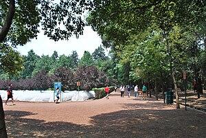 Viveros de Coyoacán - Jogging path in the park