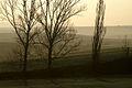 Cizur-mimentza-02.jpg