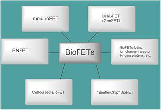 Bio-FET - Image: Classification of Bio FET