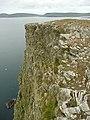 Cliffs above the Ayre of Baga - geograph.org.uk - 937735.jpg