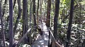 Clube de Pesca Lago Verde - panoramio (3).jpg