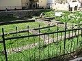 Cluj-Napoca - Parc arh.Deleu - IMG 1622 06.jpg