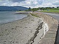 Coast road and sea wall between Rostrevor and Warrenpoint - geograph.org.uk - 441072.jpg