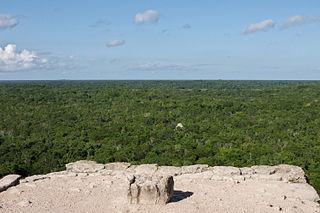 Yucatán moist forests