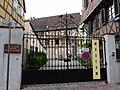 Colmar-Musée d'histoire naturelle et d'ethnographie de Colmar (3).jpg