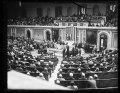Congress, U.S. Capitol, Washington, D.C. LCCN2016890056.tif