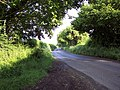 Country Lane - geograph.org.uk - 448166.jpg
