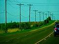 County Trunk Highway M - panoramio.jpg
