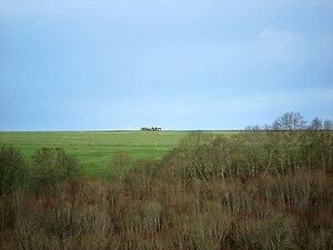 Hambledon Hill - Hambledon Hill, as seen from Hod Hill
