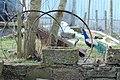 Crackaig Farm - geograph.org.uk - 160213.jpg