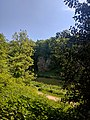Creswell Gorge, Creswell Craggs, Notts (20).jpg