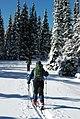 Crosscountry skiers winter skiing snowshoeing (17346541916).jpg