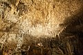 Cueva del Drach Mallorca 02.jpg