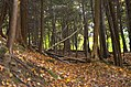 Cuyahoga Valley National Park (10544445015).jpg