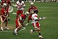 D1 Lacrosse.jpg
