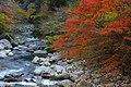 Dando-gawa River, Otaga-cho Toyota 2014.jpg