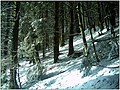December Black Mountains Foret Noir - Master Mythos Black Forest Photography 2013 High Glotter Valley Sägendobel Pass - panoramio (7).jpg