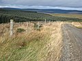Deer proof fence near Shielsike Crags - geograph.org.uk - 599163.jpg