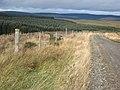 Deer proof fence near Shielsike Crags - geograph.org.uk - 599163.jpg