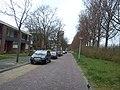Delft - 2013 - panoramio (1149).jpg